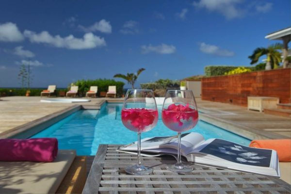 la-vie-en-rose-pool-2